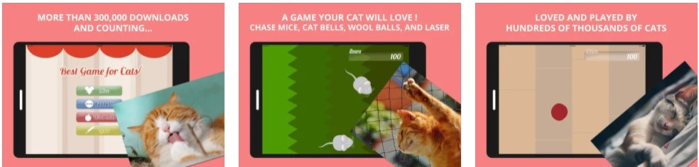 Best Games for Cats